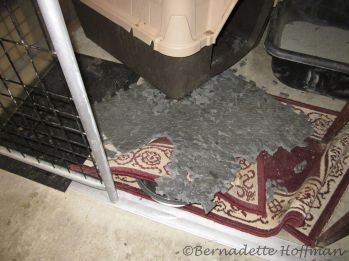 11-14-17 Foam mat