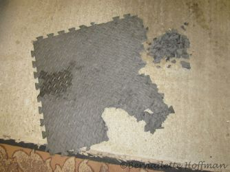 11-14-17 Foam mat from under his housing and pieces found inside