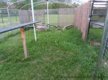 Before Max enclosure