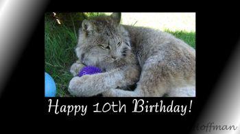 Birthday video